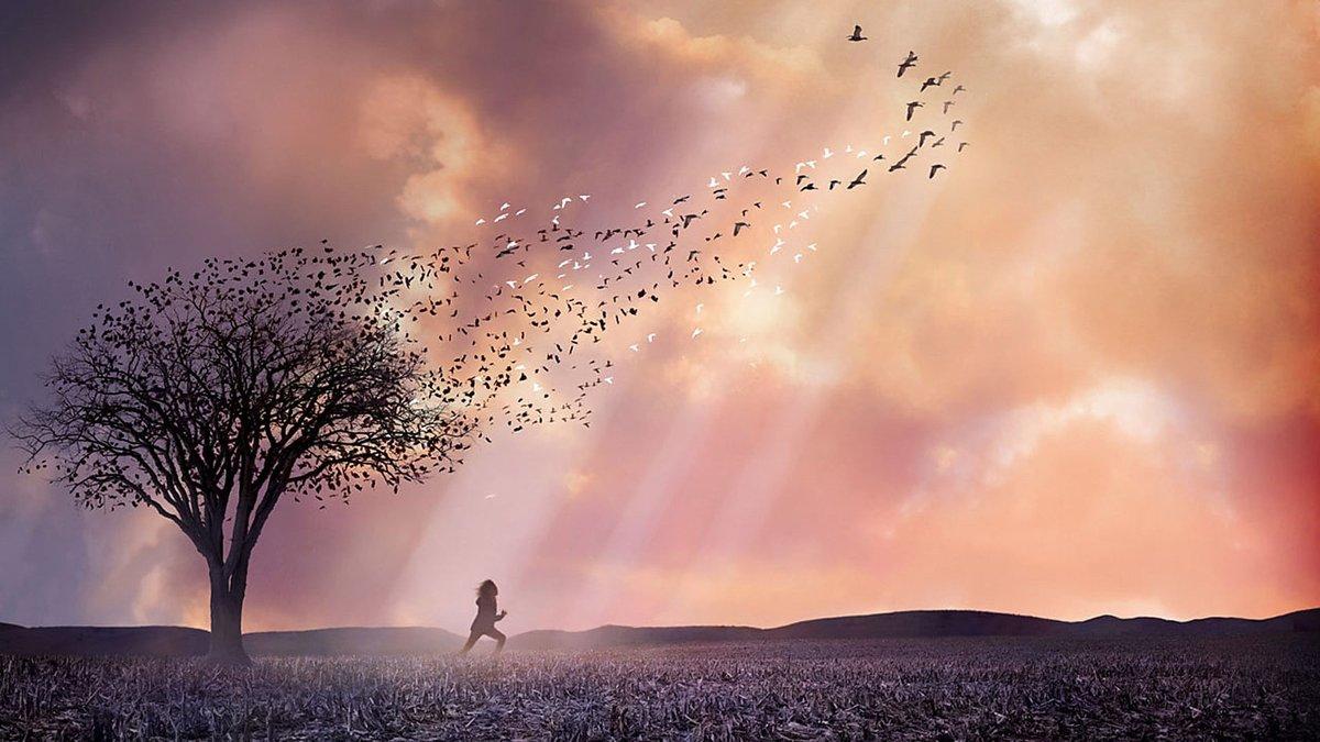 Самые красивые картинки про жизнь с надписями со смыслом, красивые