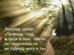 Цитаты о природе и гармонии