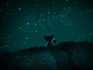 Цитаты про звезды