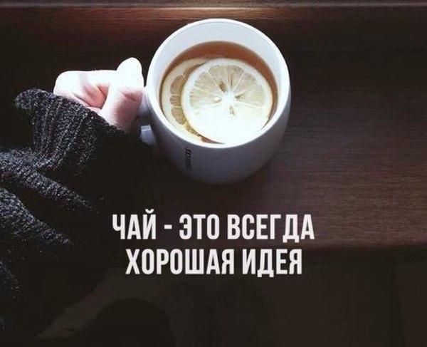 чашка чая мэнсфилд